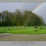 2005-04-08 Das Ende des Regenbogens