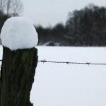 2009-01-05 Schnee in NRW