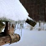 2009-02-17 Eiszapfen