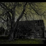 Der Baum vor dem alten Bauernhaus
