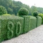 Kunst in grün
